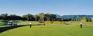 the links - port douglas