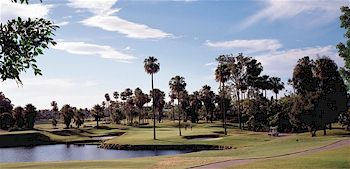 The beautiful Sanctuary Cove Palms course